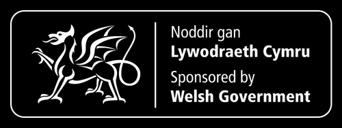 welsh govt logo white landcape