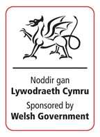welsh govt portrait colour